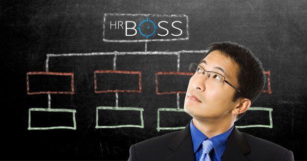 HR Org Chart Tool Organisational Chart for HR Org Chart Tool for HR Human Resource Organisational Chart