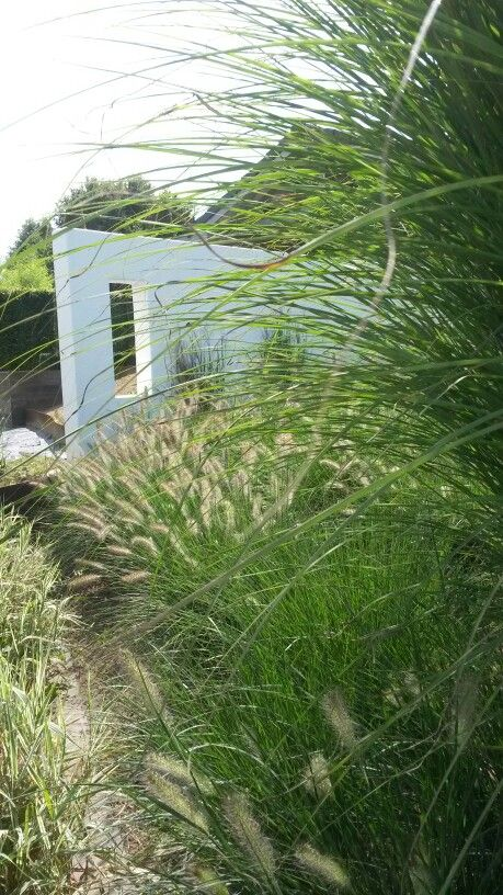 Moderne tuin afscheiding