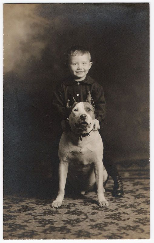 Great vintage kiddo and pit bull smiles | Pitties