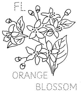 Embroidery - State flower quilt block: Florida, Orange blossom