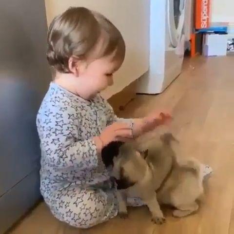Cute Baby & Cute Puppies ❤️♥️