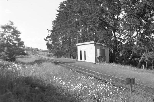 Sunnyvale Railway Station on the old line of rail. 1954. For more information on the realignment of the railway line, see the article: Deviation at Sunnyvale in West Auckland Historical Society newsletter, August 2012.