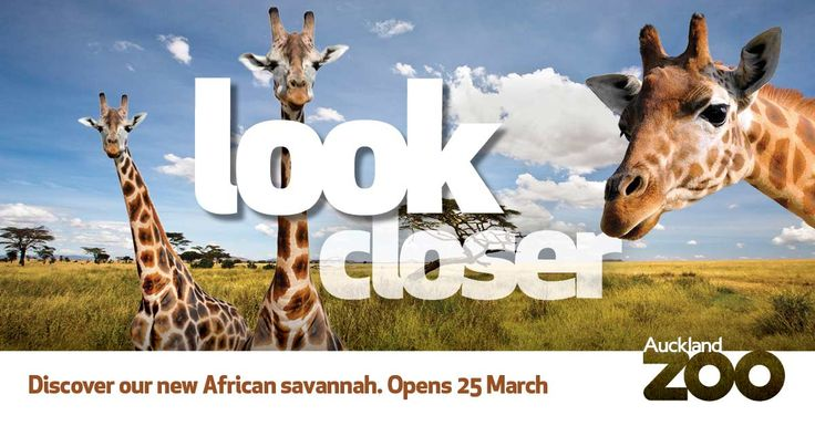 Win a family pass to see Auckland Zoo's new African savannah development, opening Friday 25 March. Enter here http://www.kidspot.co.nz/Competition/competition-detail.asp?id=1349 Entries close 24 April 2016.