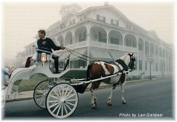 Cape May Carriage Company: Capes May Wedding, Wedding Carriage, Private Hors