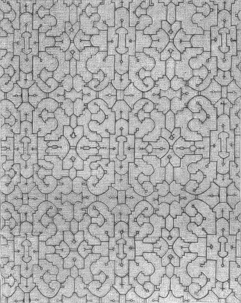 The textiles and embroidery of the Shipibo tribe, all crafted by women, contain recursive and self-reflective motifs, including geometric configurations common to those generated computationally by iterative functions. A characteristic recurring visual system found in the textiles are the bilaterally generated cellular patterns containing space-filling curves.