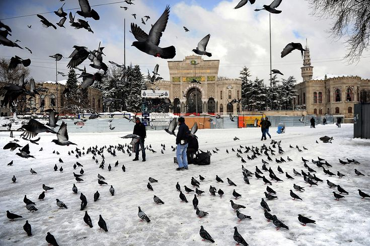 Istanbul se réveille drapée en blanc