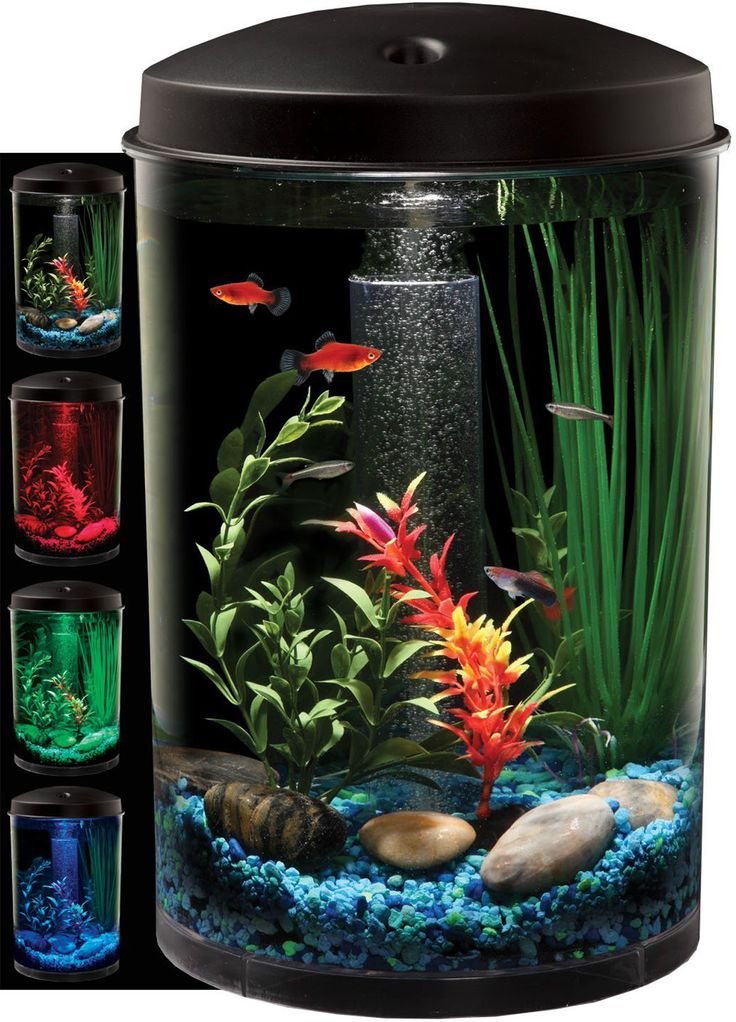 Simple and Unique Aquarium Design ~ http://www.lookmyhomes.com/pick-one-of-unique-aquariums-design-ideas-for-your-fish/