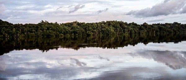Al descubierto: Demandan a Colombia por $16.500 millones de dólares al amparo del TLC con EEUU, por crear el Parque Nacional Yaigoji Apaporis - http://verdenoticias.org/index.php/blog-noticias-medio-ambiente/290-al-descubierto-demandan-a-colombia-por-16-500-millones-de-dolares-al-amparo-del-tlc-con-eeuu-por-crear-el-parque-nacional-yaigoji-apaporis
