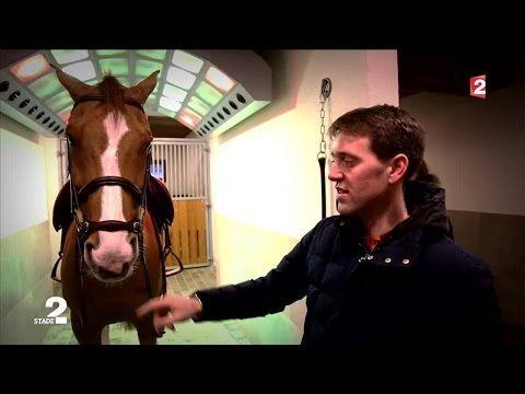 Portrait du cavalier français Simon Delestre - YouTube