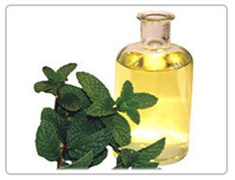AOS Products is a prominent manufacturer, wholesale suppliers company of Menthyl Acetate in India. We export superior quality and natural Menthyl Acetate and its products to all over the globe.