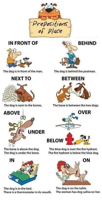 Preposition  Preposition