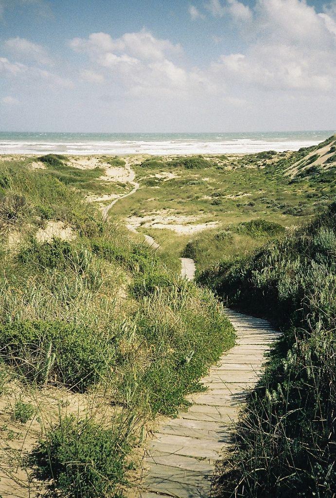 'kodacolorframes: goolwa, october 2012' • Goolwa beach • Adelaide city • Adelaide's beaches