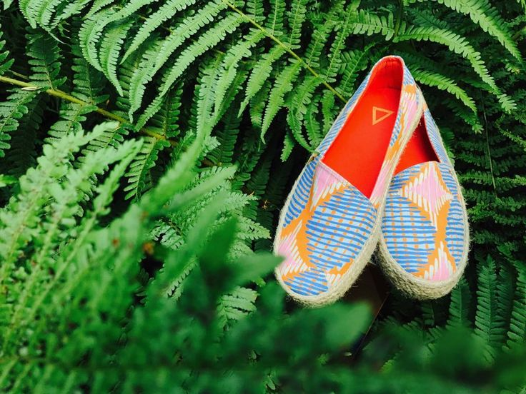 Stellar Shoes on our green mission being vegan and awesome and reforesting the planet #veganfashion