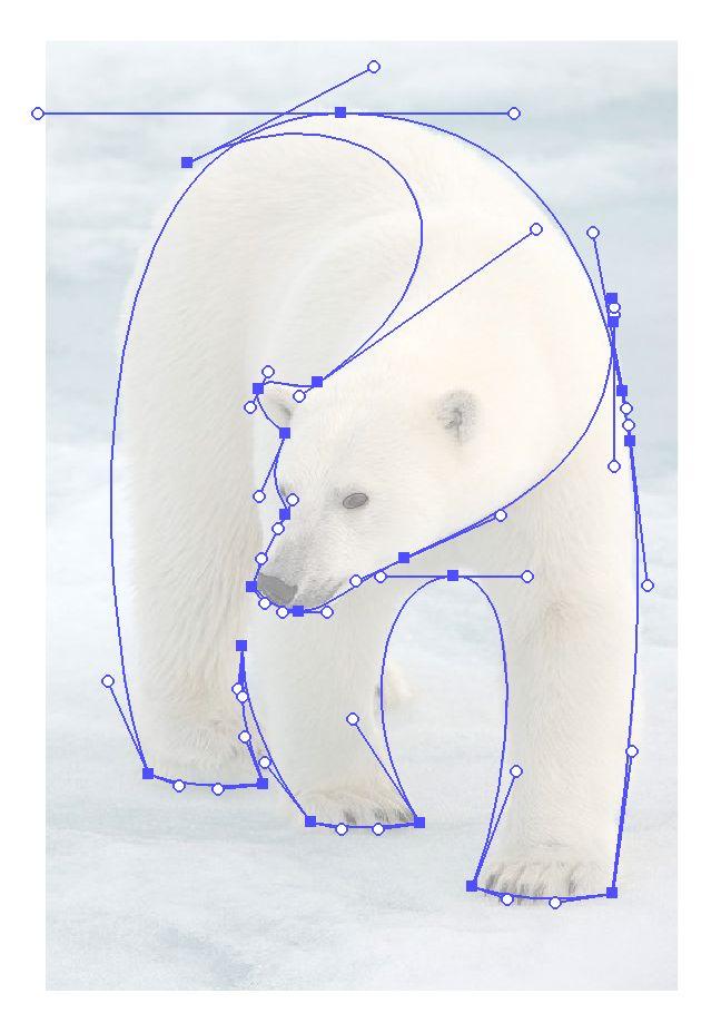 Reference-screengrab Polar Bear logo