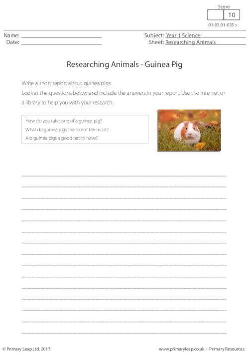 27 best history printable worksheets