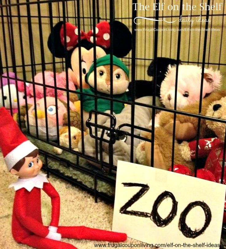 Elf on the Shelf Ideas | Zookeeper Elf on Frugal Coupon LIving. This idea and daily funny elf on the shelf ideas - 100s of ideas.