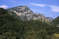 L'Alta Garrotxa és un dels espais naturals més importants del Prepirineu oriental de llevant, a causa de la seva diversitat, singularitat, i el relatiu aïllament geogràfic (provocat per l'encerclament de muntanyes en una zona fronterera), fet que ha permès preservar una alta diversitat d'ambients naturals en bon estat de conservació.