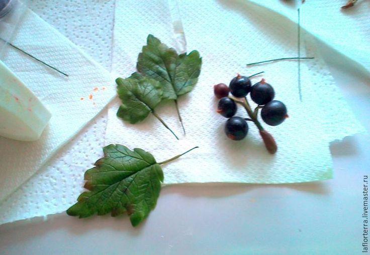 Лето... дача... и, конечно же, черная смородина! Такая красивая и вкусная ягода, что хочется слепить! Сегодня я вам покажу, как слепить с натуры небольшую веточку черной смородины из самозатвердевающей полимерной глины («холодного фарфора»). Этот мастер-класс хорошо подойдет для тех, у кого есть начальные знания в лепке. Для начала изучим кустик с ягодами, посмотрим, как на веточки располагаются ягоды и листья, какая форма у листье…