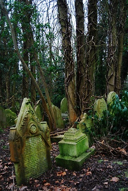 Highgate Cemetery, Romford Rd, East London. When I was there in '06, it was the most magical (and quite scary) place to explore. It appeared that at the back of the cemetery (similar to the photo) there were areas that had possibly been bombed due to huge, unexplainable pits in random places where graves had fallen into/been destroyed. The chapel had partially collapsed, and vines and trees found their way inside, as did birds. A quintessential mysterious creepy London cemetery!