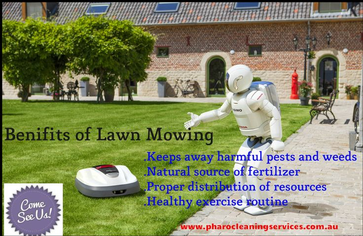 Mowing the lawn has both mind and body benefits. Using lawn mower is good for your yard, good for the environment, and good for you. There are host of benefits of Lawn Mowing, know about the usefulness of Lawn Mowing.