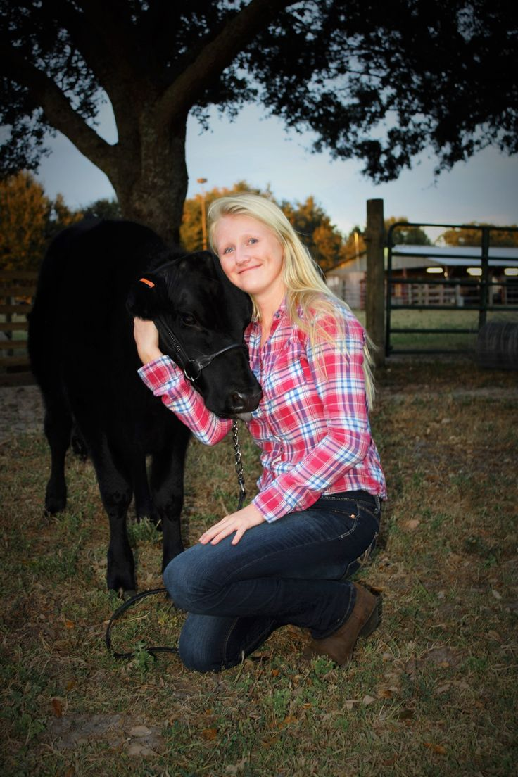 Show Cattle Photography