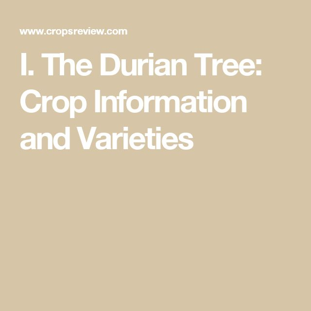 I. The Durian Tree: Crop Information and Varieties