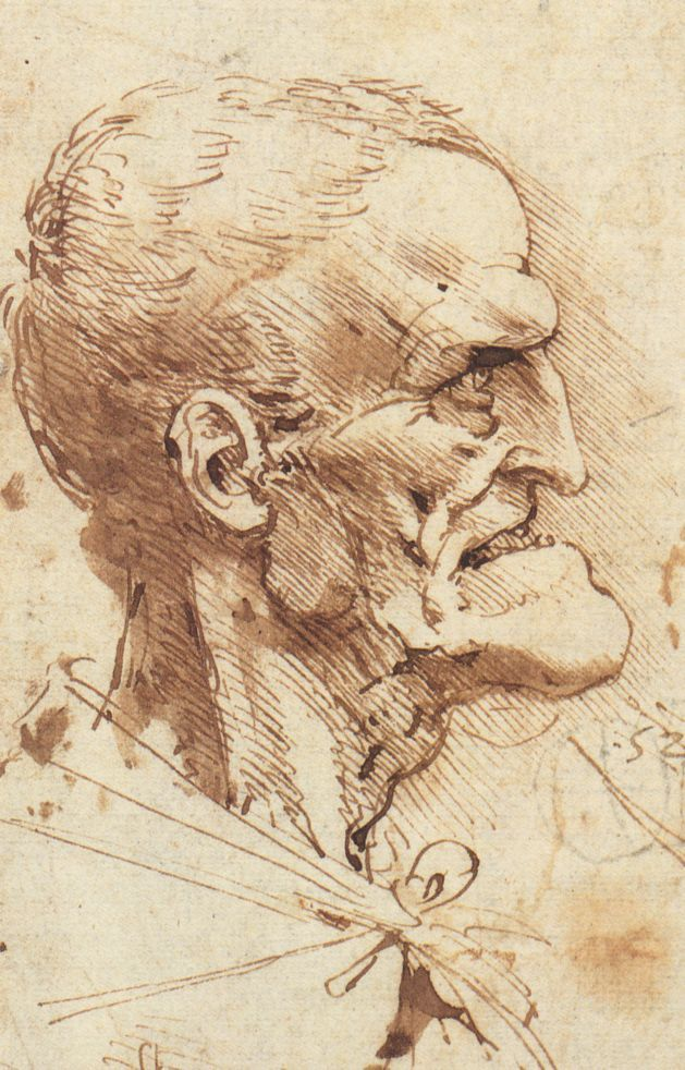 Leonardo Da Vinci Hand Drawings   Leonardo Da Vinci Sketches