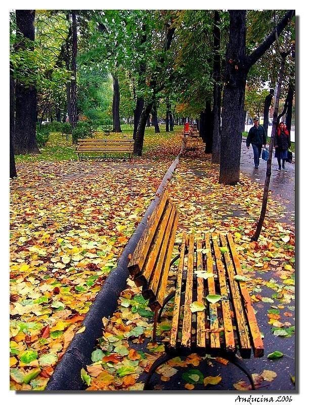Autumn, Ploiesti, Romania