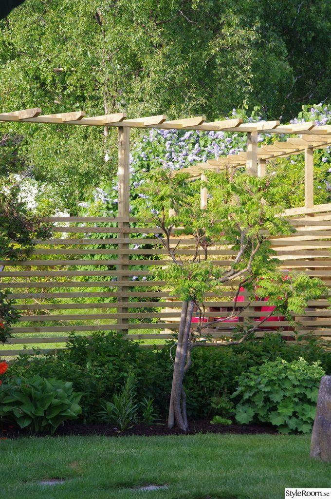 Pergola med plank, trädgårdsavdelare