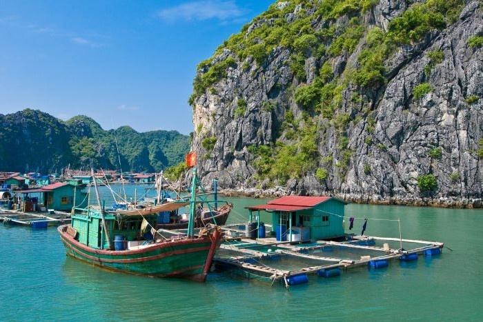 Fish farm, Ha Long Bay, Vietnam