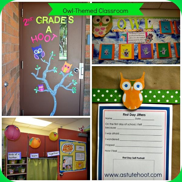 Owl Themed Classroom Decorations ~ Best images about owl themed classroom on pinterest