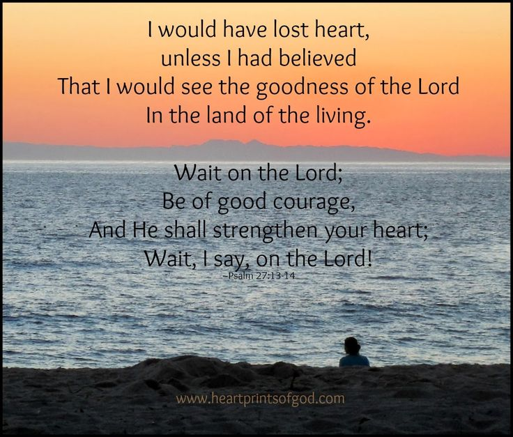 13 I had fainted, unless I had believed to see the goodness of the Lord in the land of the living. 14 Wait on the Lord: be of good courage, and he shall strengthen thine heart: wait, I say, on the Lord. Psalm 27:13-14 KJV