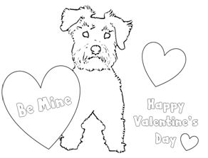 Boston chefs valentines day printable coloring pages ~ 84 best images about Schnauzers Rule on Pinterest | Giant ...