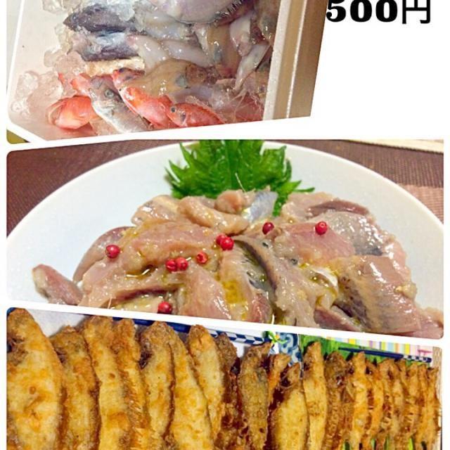 ♪屋根より高い鯉のぼり  トロ箱いっぱい500円の買い物(≧∇≦)  イワシとトビウオでマリネ  25枚あった小さなカレイを鯉のぼりに見立てから揚げにしてみました。 - 150件のもぐもぐ - イワシとトビウオのマリネ カレイの吹き流し 沼津で鮮魚の買い物 by sanomikijp