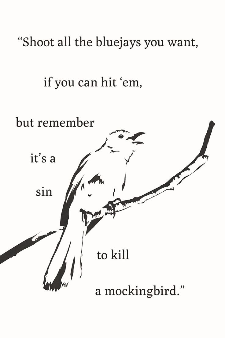 a literary analysis of the novel to kill a mockingbird Online literary criticism collection links below don't  critical sites about to kill a mockingbird  some helpful historical background on the novel contains:.