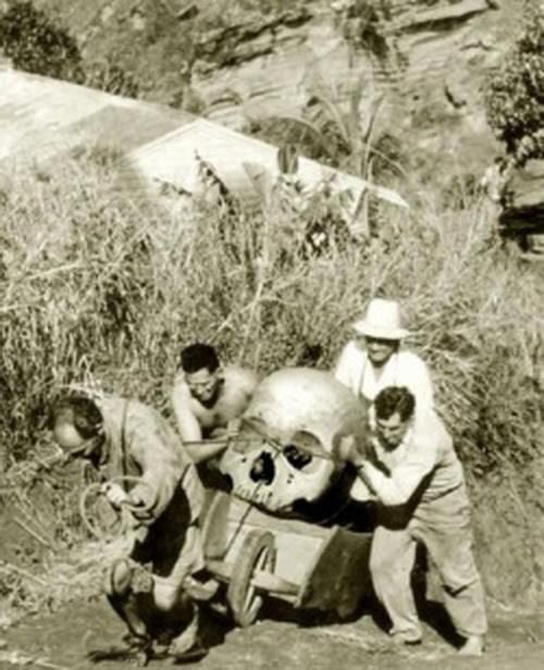 """Pitcairn Island, New Zealand - 1934. """"Local farmers are trying to hide pieces of a giant skeleton found near 'Christians cave'. Three of the men were later found dead under strange circumstances. The forth man disappeared soon after this photo was taken and was never found. The photographer's identity has never been revealed."""""""