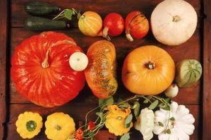 Pattypan Squash Nutrition Information   LIVESTRONG.COM