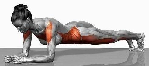 De Plank.....meest effectieve oefening voor je hele lichaam.