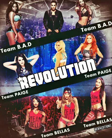 Naomi Tamina Snuka Sasha Banks Paige Charlotte Becky Lynch Alicia Fox Nikki & Brie Bella