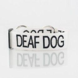 Deaf_CollarEKP_9727