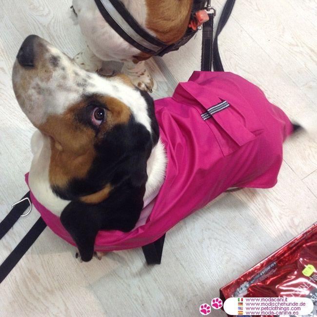 Billige Regenmantel für große Hunde, in Rosa #Hunde #BassetHound - Rosa ärmellosen Regenmantel für große Hunde, billige: alle Verschlüsse sind mit velcro; grundsätzlich ist es eine wasserdichte Poncho