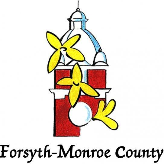Forsyth Georgia / Monroe County