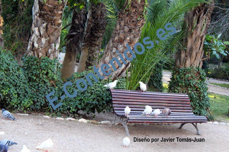 Proporciona consejos sobre jardinería mediante estrategias de marketing de contenidos.