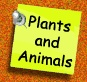 Science Online:  heredity, force and motion, matter, cells, living things, plants and animals...all sorts of lessons!