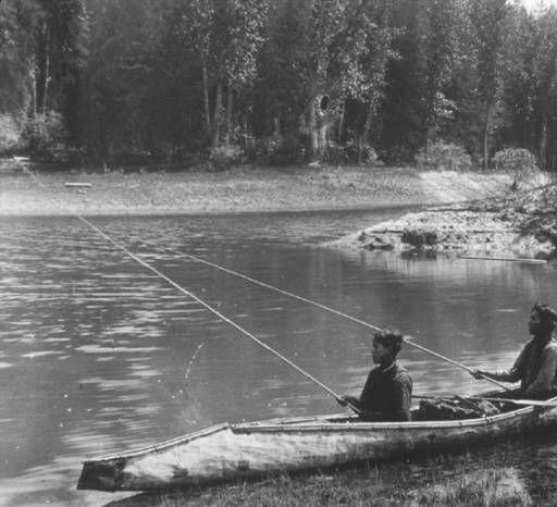 340 best american bark canoe images on pinterest native for Pacific northwest fish