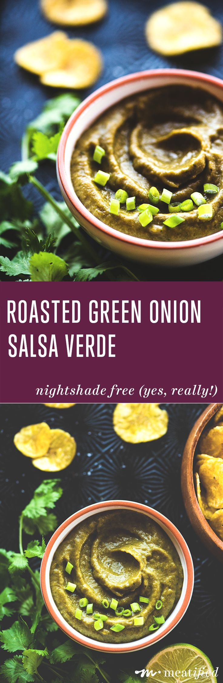 Yes, really. This Roasted Green Onion Salsa Verde from http://meatified.com is nightshade free! Sweet & smoky, flavor filled and scoopable, you'll want to add this to so many meals!