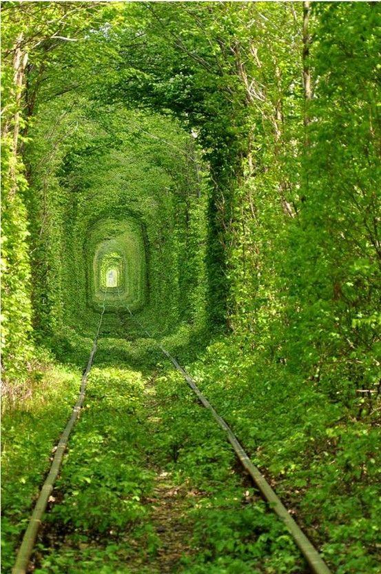 Green Tunnel :-)