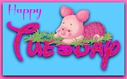 Happy Tuesday quotes cute quote piglet days of the week tuesday tuesday quotes
