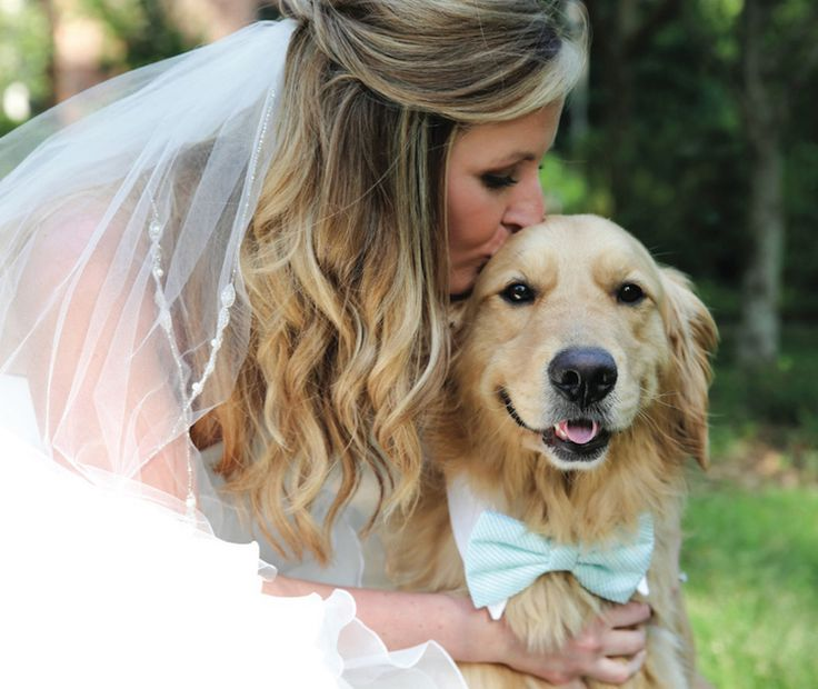 Adorable golden retriever at wedding in light blue bow tie! See more from this chic Memphis wedding inspiration collection with a country cottage theme by @looneybinkids! | The Pink Bride® www.thepinkbride.com