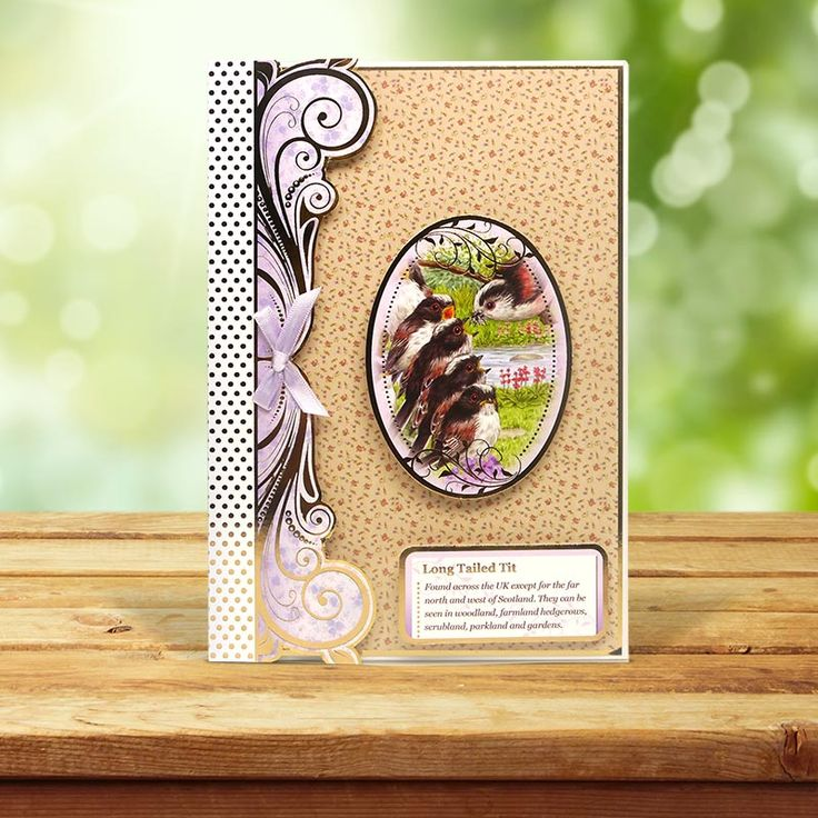 This card was made using the 'Blue Tit & Long Tailed Tit' topper set from the Birds of Britain Collection
